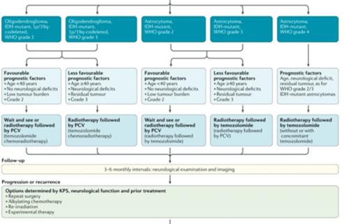 EANO Guideline 2